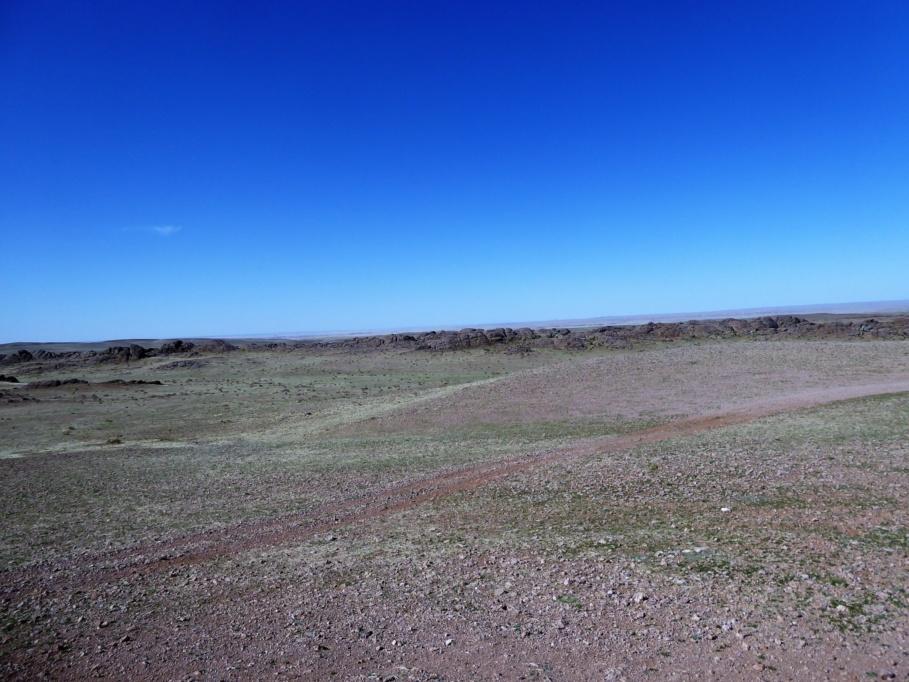 Gobi Track