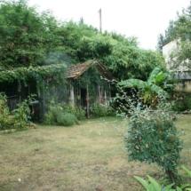 herb-garden-20101024
