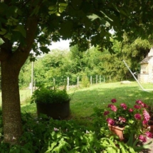 Home Garden 2010