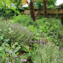Villa Herb Garden